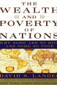 The wealth and poverty of nations :why some are so rich and some so poor